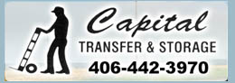 Capital Transfer logo